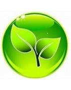 Nettoyage à sec ou aquaclean : pressing écologique selon les besoins